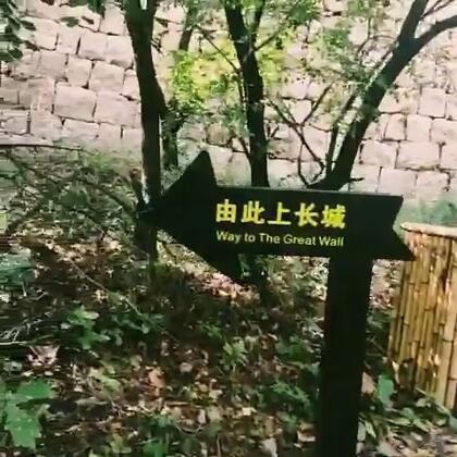 重阳节带娃们登高去……✌😍