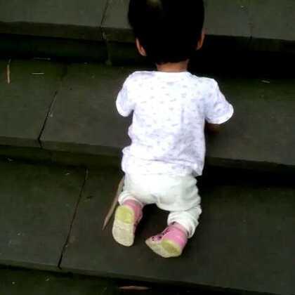 在动物园爬梯子