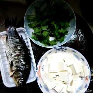 鯽魚豆腐湯#美食##美味#(材料:香菜適量,豆腐一塊,鯽魚一條)