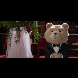 #美拍影视速递##六月特辑#Wat?!今年夏天怎么可以没有贱熊2!BTW不懂国内是否会上映诶!不过还是与小编先来一睹为快吧!