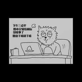 《一语中枪》05 关于股票的冷事实#美拍搞笑新人王##逗比##吐槽##股票##演技大比拼#