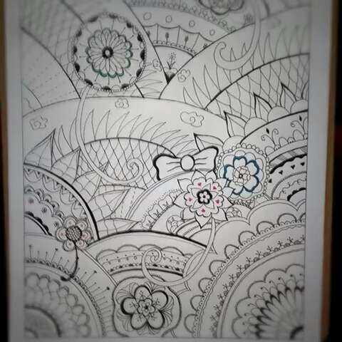 创意简笔画 秘密花园 终于完工了 看不懂看不懂 文刀客儿的美拍