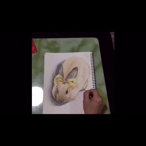 彩铅画##萌物##可爱动物##萌兔兔##周四##我爱画画