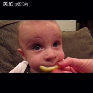 #搞笑宝宝##baby##宝宝吃柠檬#宝宝第一次吃柠檬,这酸爽!😂