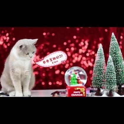 圣诞来啦~一款简单好上手的圣诞吸睛妆容带给大家~~拍摄头天发生了点小意外哭了一场,搞的眼睛也是肿的,脸也是肿的,大家莫怪啦~关注我的微信:vkjuan 跟我一起交流分享各种美妆日常~☺#卷卷美妆日记##时尚#