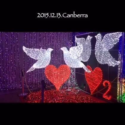 #圣诞节##随手美拍##旅行##随手拍圣诞#澳大利亚堪培拉圣诞灯展!酷暑中的圣诞节~
