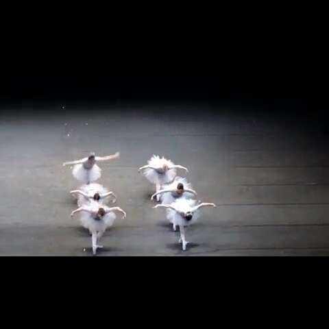 史上最雷人的舞蹈_史上最雷人的舞蹈