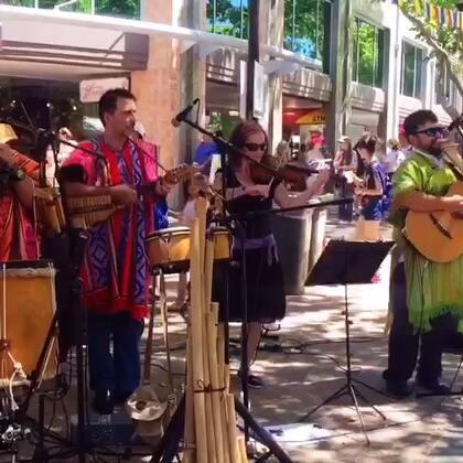 #音乐##旅行#澳洲堪培拉多元文化节