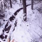 第一次身处雪景中😂#下雪了#