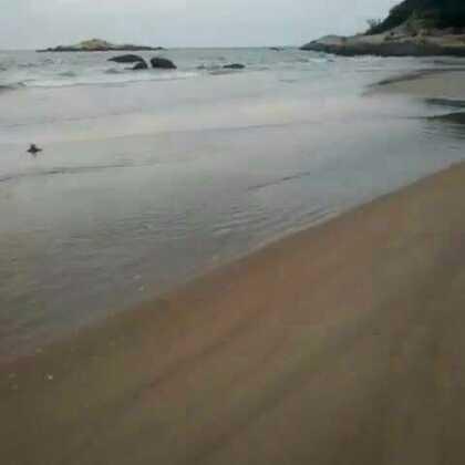 从此生活在这海边喽😄环境虽好 却没WiFi😃