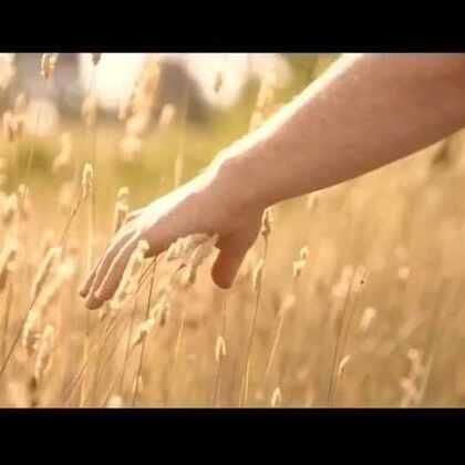 #旅行##澳洲##堪培拉#堪培拉宣传片Breath篇