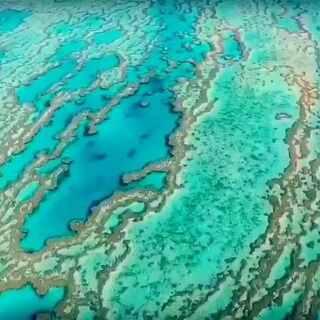 #航拍##澳大利亚大堡礁#大堡礁(英文:The Great Barrier Reef),是世界最大最长的珊瑚礁群,位于南半球,它纵贯于澳洲的东北沿海,北从托雷斯海峡,南到南回归线以南,绵延伸展共有2011公里,最宽处161公里。有2900个大小珊瑚礁岛,自然景观非常特殊。
