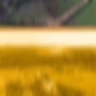 #航拍##澳洲游#。无人机带你空中看Maru动物园全景!Maru动物园距离墨尔本市区100公里,距离菲利普企鹅岛只有37公里,在这里你可以观看袋鼠,考拉等澳洲独有动物。也可以亲自喂食袋鼠,鹦鹉,近观考拉的真实动态,还可以见到频临绝种的塔斯马尼亚魔鬼,真正了解澳洲的动物。