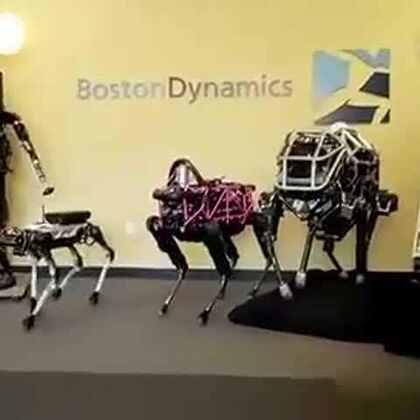 #涨姿势#单身机器狗竟然踩到香蕉皮滑倒 不过它们的智商着实不低
