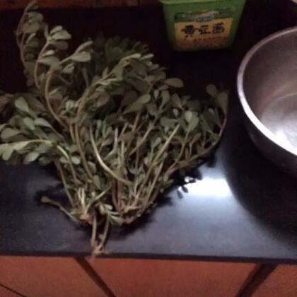 野菜马齿苋 可以凉拌 做汤 做馅 有清热解毒凉血得功效。它的药用价值很高 有很多功效大家可以百度搜一下。我这个貌似炒水时间有点长了。😬#随手美拍##美食#