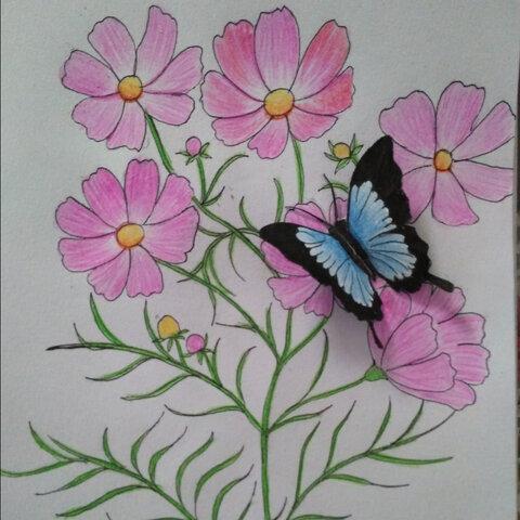 彩铅画,蝴蝶是画的剪下来贴上去的,更加立体 生动,喜欢的赞吧 流星雨 的美拍