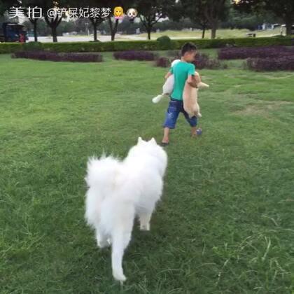 #汪星人##遛狗时光#带出去陪它玩了大半天,宝宝人缘,狗缘还是挺好的😂