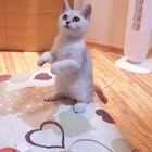 #我的男友是兽医# 这是这个美拍的第一个视频。我养了一只猫叫做:一饼。拿手表的是我的男朋友:执业兽医张医生。那…这里只用来记录这两位我身边最爱的雄性哺乳动物!我不求有人喜欢看,但我喜欢分享生活,我想在这里发表我对他们的满满的爱,就是这样。#宠物##喵星人##家有萌宠#