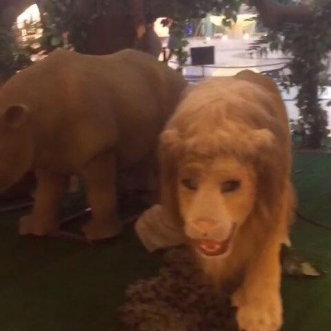 商场里的动物园