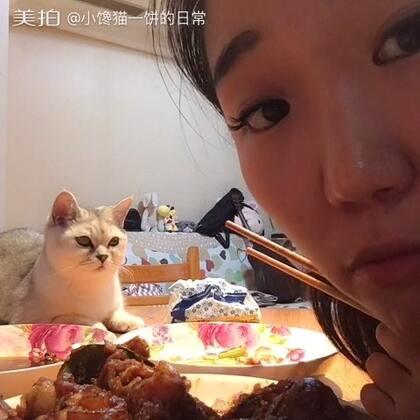 #走哪吃哪##晚餐##小馋猫##喵星人##吃秀# 就爱上桌子啊