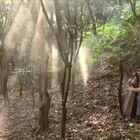 我心中最仙的一首竖琴曲《精灵王国》,俄罗斯竖琴男神Alizibar的作品,last fallen leaf。讲述霍比特人和矮人来到精灵王国时的场景。MV是我自拍的,也是我到目前为止拍的最费心思的mv。喜欢请转发!!#音乐##5分钟美拍##男神##美拍达人秀##自拍#