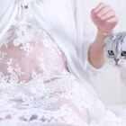 关于怀孕和养猫、关于宝宝和猫咪,总有太多的言论和质疑,从来没有正面回应过,因为不想说太多,只想用一整年的行动去诠释,这就是我的2016#美好孕期##宝宝##宠物#