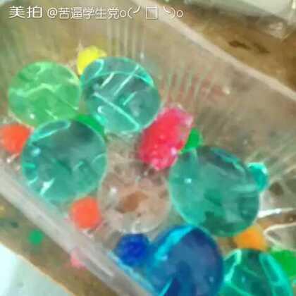 我的霸王珠,还是海洋宝宝,以前的海洋宝宝,被楼下一个小孩子拿去了,不喜勿喷。#水晶宝宝之霸王珠##霸王珠#😉😉