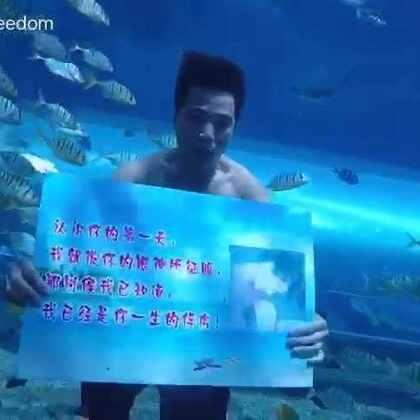 2017最浪漫的水下表白--小黄!祝福有情人终成眷属!