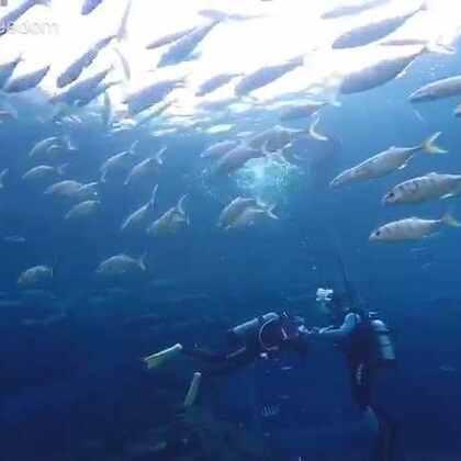 海洋馆体验潜水--小微