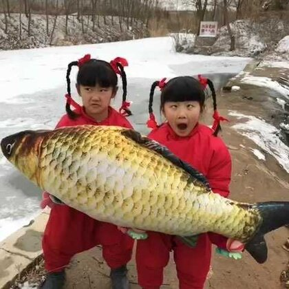#热门##搞笑##5分钟美拍##宝宝##大鱼#亲们,马上快过年了,祝大家年年有鱼,发发发,谢谢支持!