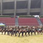 别人家的高中!韩国艺术高中刀群舞 帅出新高度!