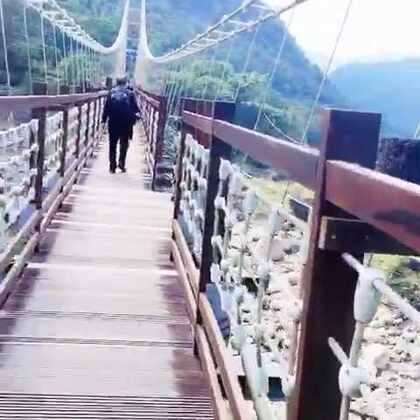 台湾游第四天~#旅游##日常#这里是台湾的阿里山😋