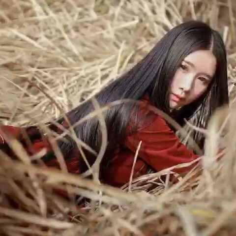 #摄影技巧#视频地拍小姨子#v视频后期技巧#完芦苇王鸭短图片