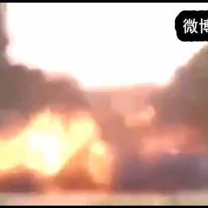 【包子雷 1 】视频极度暴力,请谨慎查看。 #热门##搞笑##我要上热门#