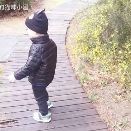 北京今天终于变暖了,帅先森也可以出去踏踏青了。✌️#帅帅成长记##宝宝##踏青#