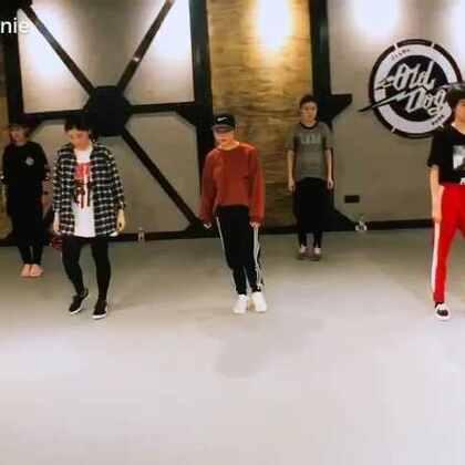 我的新舞「学员组」……快来找自己😽😽😽😽#舞蹈##爱舞蹈爱生活##Gemini#