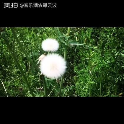 【音乐潮农郑云波美拍】04-02 16:46