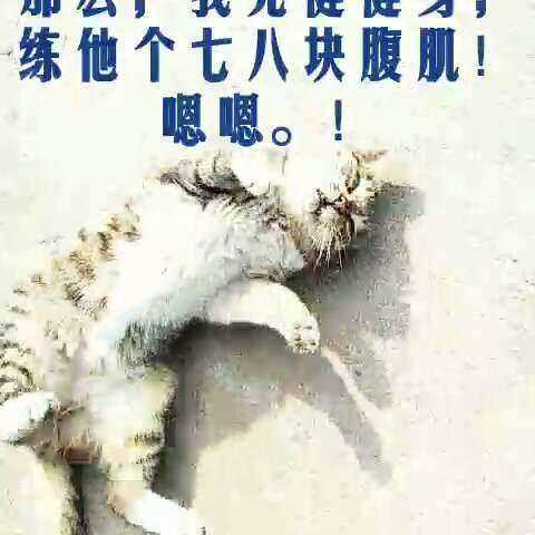 肥猫瘦了,莫非是v宝宝健的#宝宝##搞笑##美拍小抱鱼缸表情包佩奇猪图片