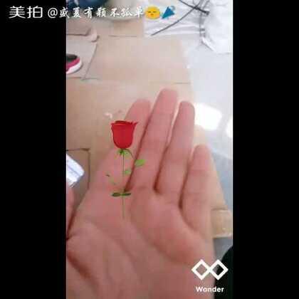 #随手美拍#厉害了我的左手,#晚安#😃😃😃😃☺☺☺☺最后是不是想把玫瑰🌹吃掉☺