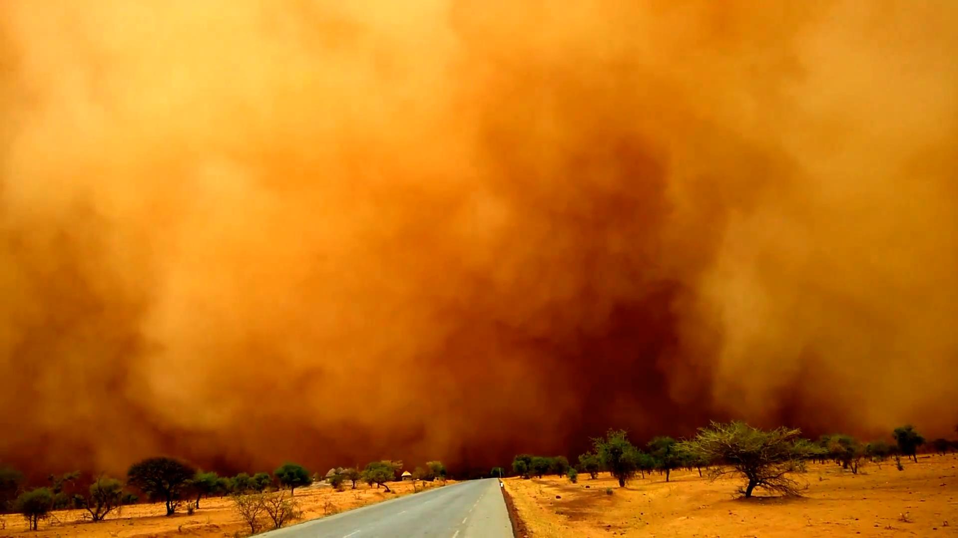 沙尘暴来啦!