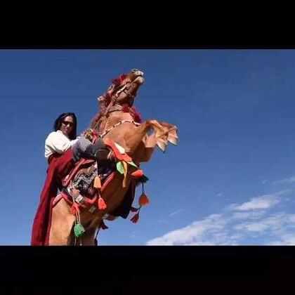 ༼འདོ་བ་རྟ༽དབང་གྲགས་ཚེ་རིང་།原创音乐专辑《走进称多》之《飞翔的骏马》超清MV🎬称多16年生态游牧文化节 嘉塘马术文化节主题歌! 作词:智江·才仁多杰作曲:拉杰·更松演唱:文章才仁 摄影@李知布多杰