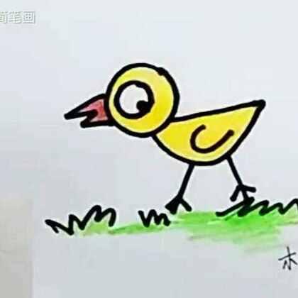 木老师简笔画的美拍
