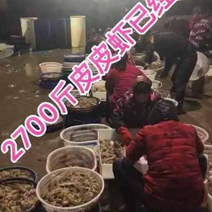 明天要发的货已经准备好,马上养海了,现在很多鱼民已经回港了,货量一天天减少,一年中吃皮皮虾最好的季节马上就要过了,想吃不要犹豫快快快➕微:daxia20170229,活动继续走起!#吃秀##我要上热门##我要上热门@美拍小助手#老规矩点赞到3万,抽6位一人2斤皮皮虾,想免费吃的点赞疯狂走起