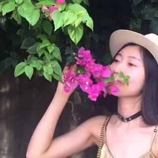 泰国视频已剪完,我喜欢以动态的形式记录旅行🌺虽然效果不是多么好,但是小裴子说我有进步,比欧洲和日本的视频好😄那我就继续努力😊#泰国之旅#