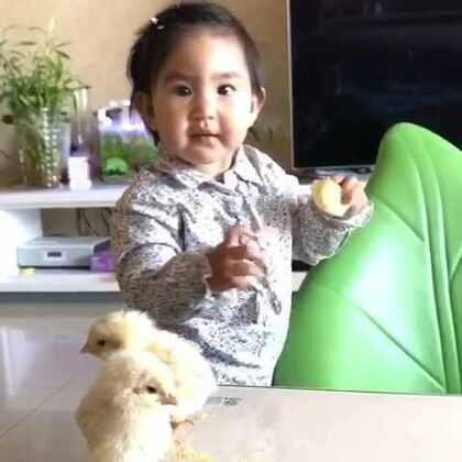 果果和小鸡鸡玩。亮眼睛👀#宝宝##萌宝宝#