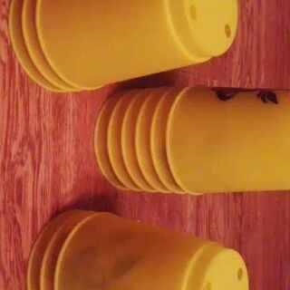 飞叠杯&横屏观看哦#玩飞叠杯##黄色系#