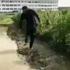 这叫滑步,你看滑的多利索,摩擦摩擦,似魔鬼的步伐!😂#搞笑#