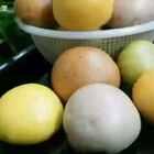【彩色豆沙包】#地方美食:陕西#为宝贝做的蔬菜彩色豆沙包
