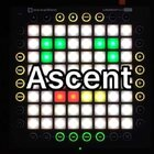 Ascent-Teminite 一首很好听的曲子,师父的原创Launchpad工程@Launchpad二狗 多谢大家的支持☺️#launchpad##音乐##launchpad pro#