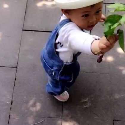 今天宝贝吃了个蜗牛,发现的时候都已经咬稀碎了😰😰😰😰😰😰😰#萌宝宝##搞笑宝宝##哪哪都热#